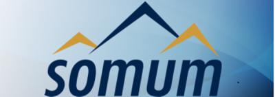 Système d'appels Automatisés d'Urgence --- Somum